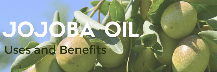 The top jojoba oil uses including jojoba oil for skin and jojoba oil for hair growth.