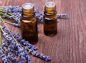 butterfly express essential oil lavender